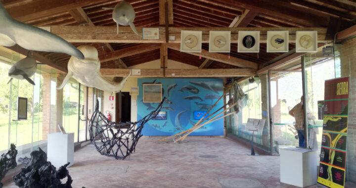 Effetto Serra | Collettiva per il Monte Pisano